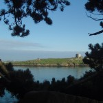 Dalkey Island IV