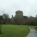 Blarney Castle I