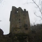 Blarney Castle II