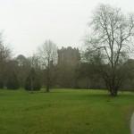 Blarney Castle III